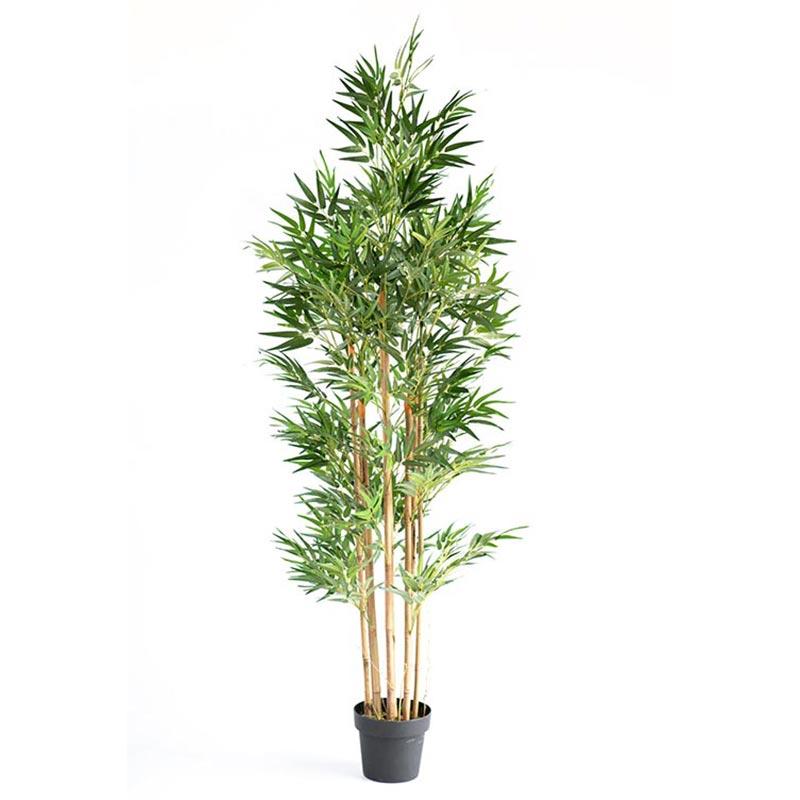 bamboo180cm